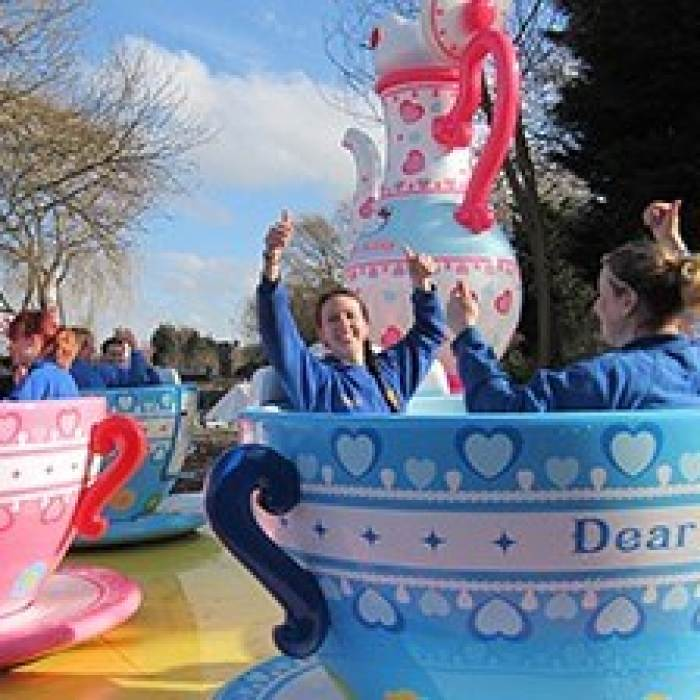 teacup theme park ride