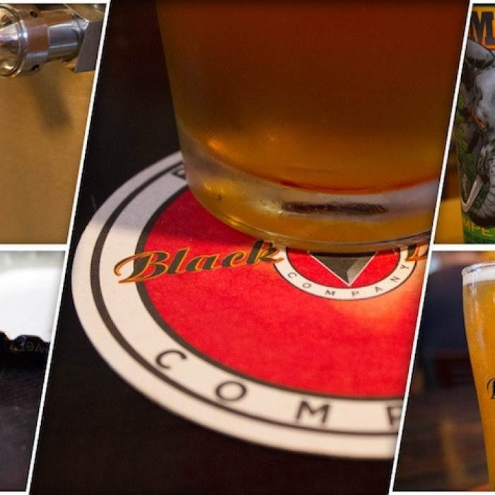local craft beers with close-ups of logo