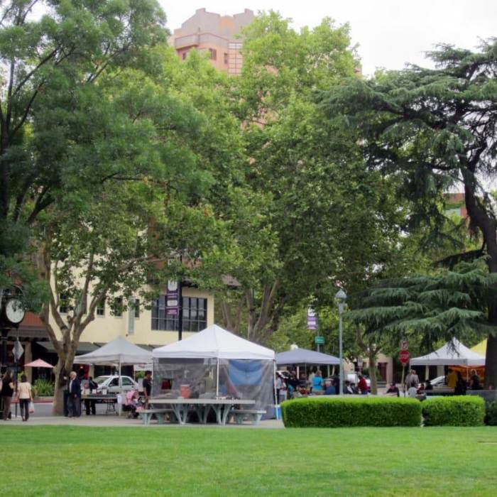 local farmers market at todos santos plaza