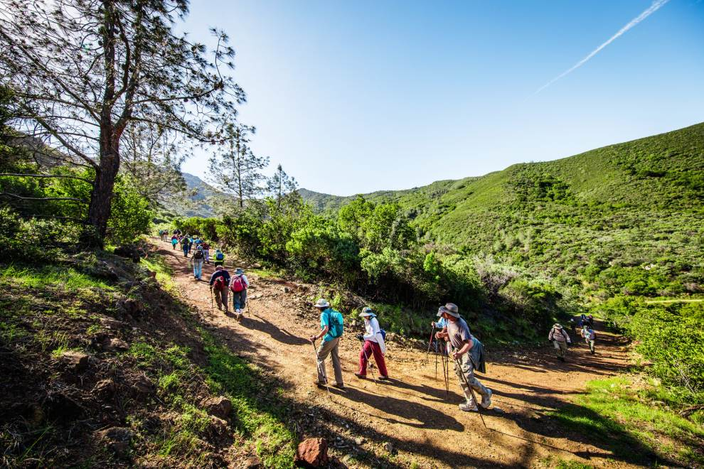 Group of hikers climbing up a hillside trail